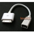 Ipad Dock to Mini HDMI Female Adapter Convertor Cable